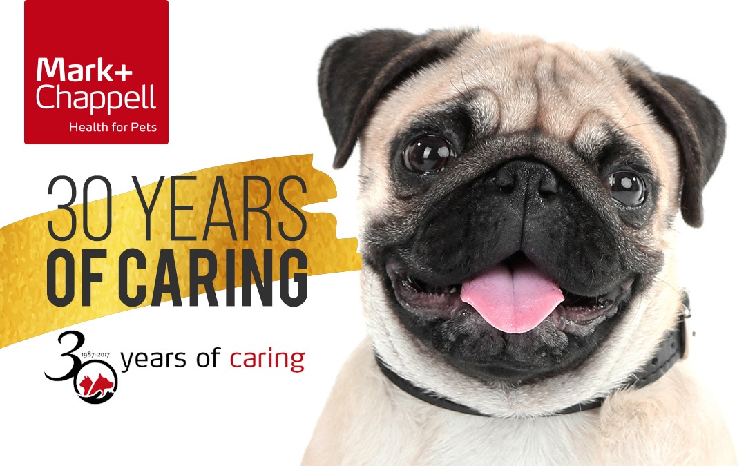 Mark + Chappell Celebrates it's 30 Year Anniversary!