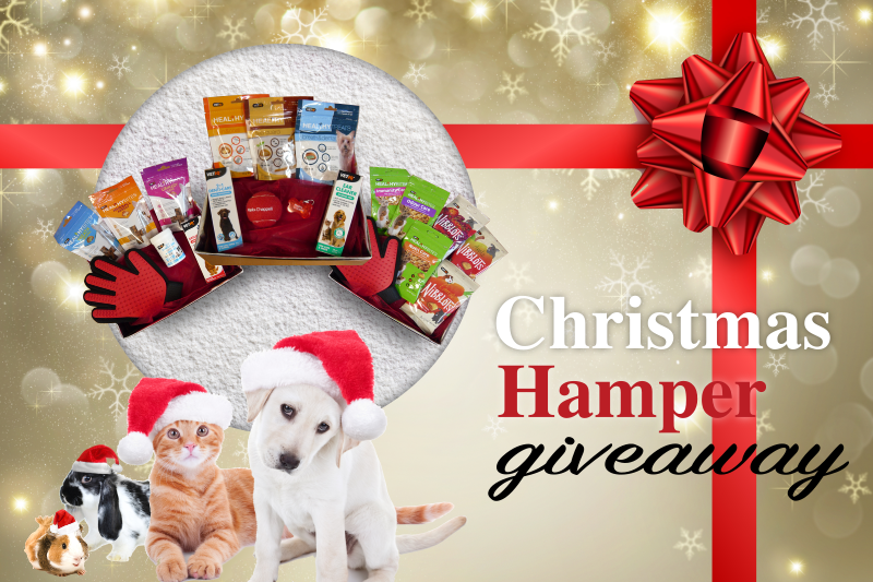 Christmas Hamper Giveaway 2019 - Mark + Chappell