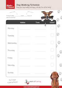 Dog Walking Schedule