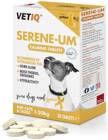 Serene-Um with tablets YellowDog_AUG2020 350
