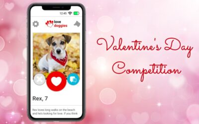 Valentine's Day Competition – February 2021