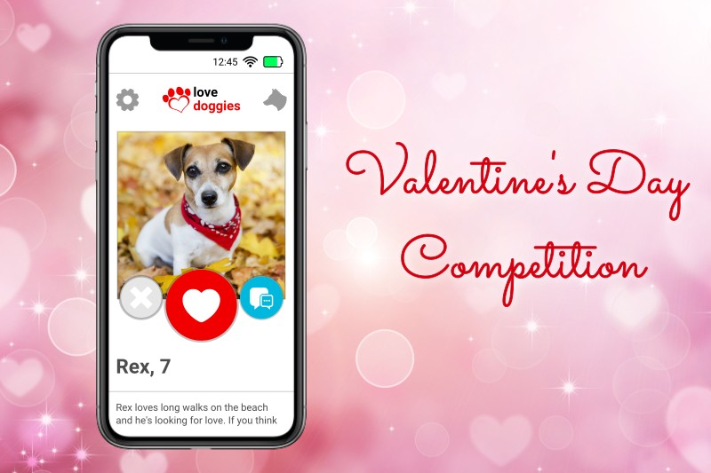 Valentine's Day Competition Feature – Mark + Chappell