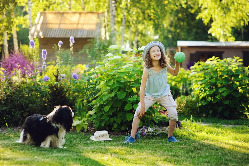 How to Keep Your Lawn Green with Dogs - Mark + Chappell