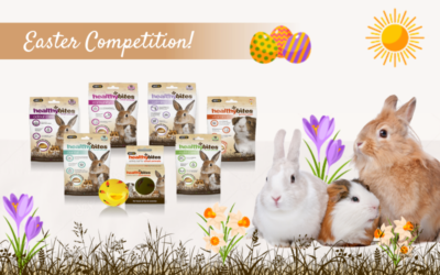 Easter Competition 2021