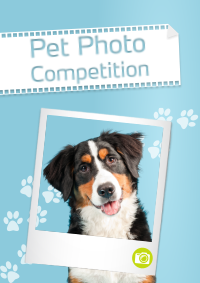 Pet Photo Competition 2 - Mark + Chappell