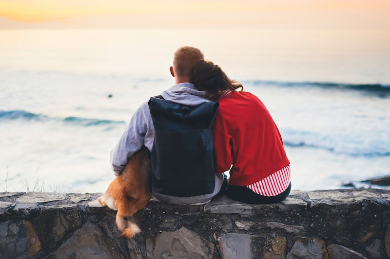 A Guide To Staycations With Your Pets - Mark + Chappell