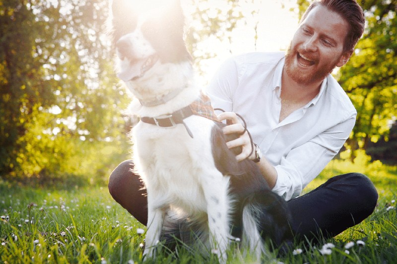 The Dog Breeds Most Prone to Anxiety 2 - Mark + Chappell