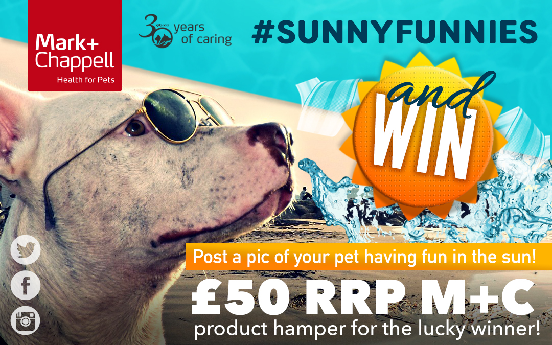 Win a £50 rrp Hamper in our Sunnies Funnies Competition!